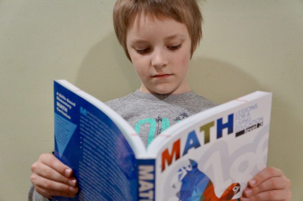 math-lessons-for-a-living-education